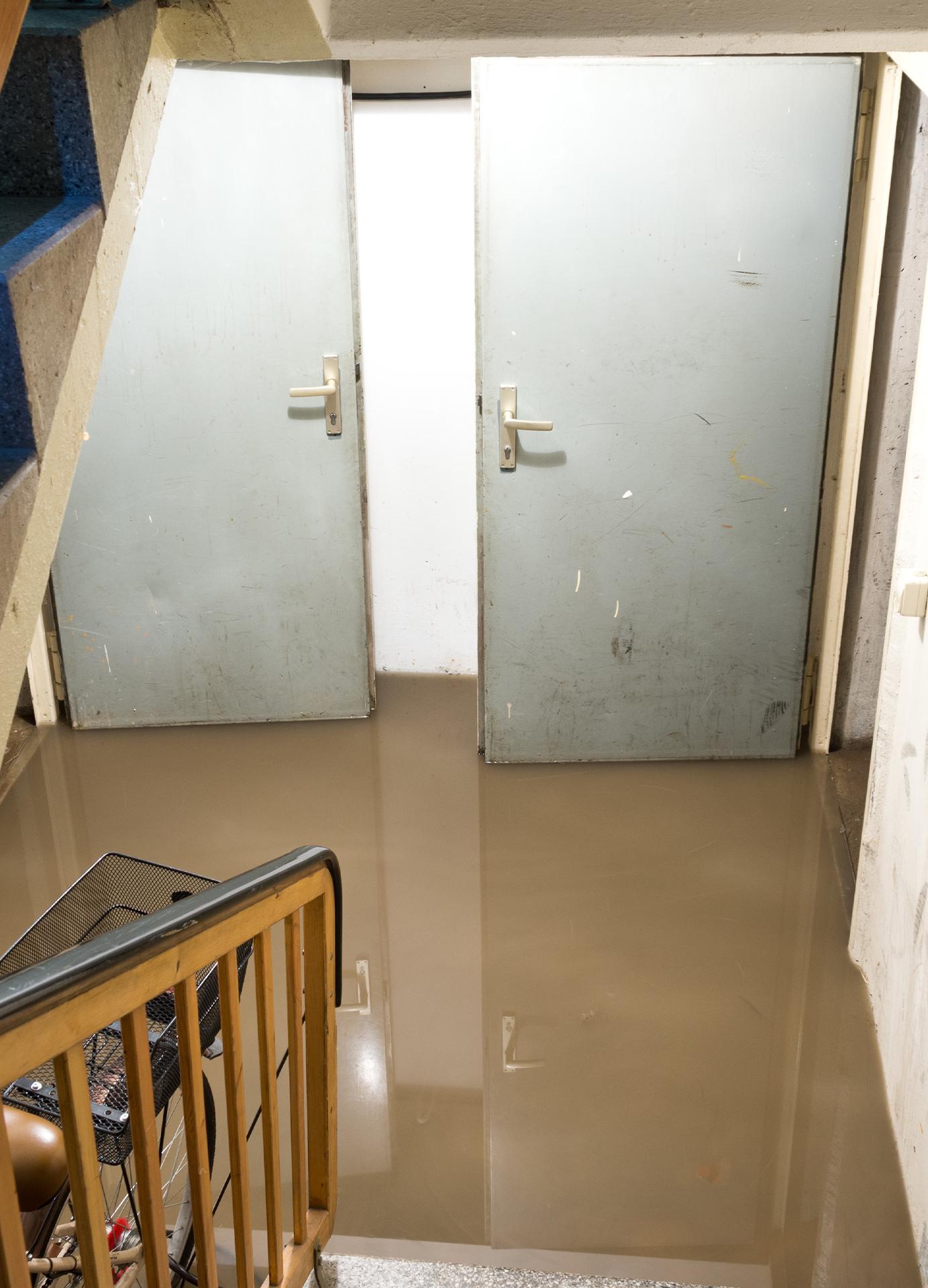 Häufig Kanalreinigung | Abflussreinigung | Kanalsanierung | Rohrreinigung JR25